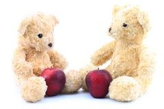 Dwa brown niedźwiedź na białym tle Fotografia Royalty Free