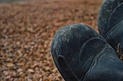 Dwa buta odpoczywa po długiej podwyżki Obraz Royalty Free