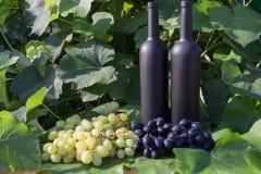 Dwa butelki wino stojaki przeciw zielonym li?ciom winnica ocet naturalny nap?j, intymni winnicy naturalny nap?j, obrazy stock