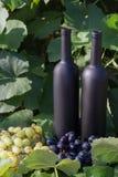 Dwa butelki wino stojaki przeciw zielonym li?ciom winnica ocet naturalny nap?j, intymni winnicy naturalny nap?j, zdjęcia stock