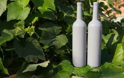 Dwa butelki wino stojaki przeciw zielonym li?ciom winnica ocet naturalny nap?j, intymni winnicy naturalny nap?j, zdjęcie stock