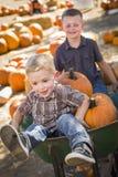 Dwa chłopiec Bawić się w Wheelbarrow przy Dyniową łatą Obrazy Royalty Free