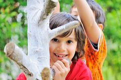 Dwa chłopiec wspina się na drzewie Zdjęcie Royalty Free