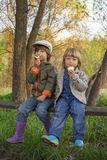 Dwa chłopiec na lesie Obraz Stock