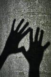 Dwa cień ręki Zdjęcie Royalty Free