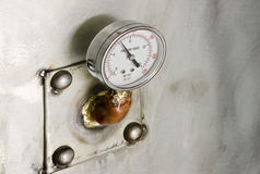 Dwa ciśnieniowy manometr Fotografia Stock