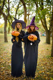 Dwa czarownicy stoi pomarańczowej bani i trzyma Zdjęcia Stock