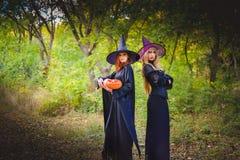 Dwa czarownicy stoi pomarańczowej bani i trzyma Fotografia Stock