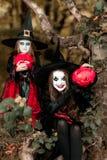 Dwa czarownicy w lesie, Halloweenowy pojęcie Obrazy Royalty Free