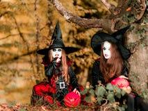 Dwa czarownicy w lesie, Halloweenowy pojęcie Obraz Stock