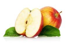 Dwa czerwieni jabłko z okwitnięciem na białym tle Fotografia Royalty Free