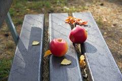Dwa czerwonego jabłka na ulicznej ławce fotografia royalty free