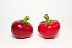 Dwa czerwonego pieprzu dalej nad bielem Obraz Stock