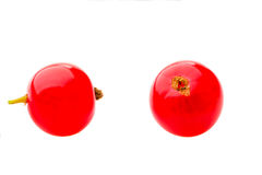 Dwa czerwonej dojrzałej porzeczkowej jagody odizolowywającej nad białym tłem Obraz Royalty Free