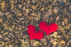 Dwa czerwony serce, valentines dnia pocztówka, kochają was, Ja kochają was Obrazy Stock