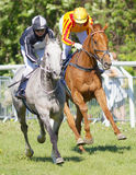 Dwa dżokeja popierają kogoś bocznego jazda cwału arabskich biegowych konie - obok - Fotografia Stock