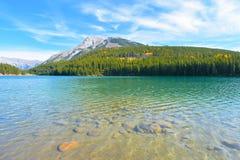 Dwa dźwigarki jeziornej Obrazy Royalty Free