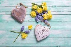 Dwa dekoracyjnego serca i świeżej wiosna koloru żółtego i błękita kwitną Obrazy Royalty Free