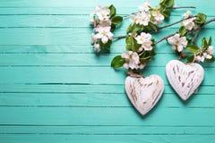 Dwa dekoracyjnego serca i jabłoni kwiatu na turkusowy drewnianym Obraz Stock