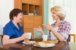 Dwa dojrzała kobieta pije herbaty zdjęcie royalty free
