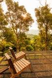 Dwa Drewnianej ławki z Pięknym światłem słonecznym i drzewami Zdjęcia Stock