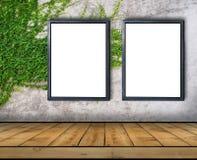 Dwa duży pusty billboard dołączający bluszcz ściana z drewnianą podłoga Obraz Royalty Free