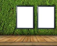 Dwa duży pusty billboard dołączający bluszcz ściana z drewnianą podłoga Obrazy Stock