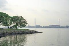 Dwa du?ego drzewa na zielonej trawie blisko rzeki i budynku pod cloundy niebem, miasta fabryka na tle widok obrazy stock