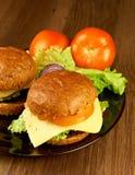 Dwa dużego hamburgeru Fotografia Royalty Free