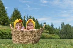 Dwa dziecięcego dziecka w Wielkanocnych kurczaków kostiumach wśrodku kosza na zielonej trawie Zdjęcie Royalty Free