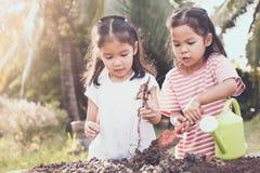 Dwa dzieci azjatykcia mała dziewczynka ma zabawę przygotowywać ziemię Fotografia Royalty Free