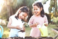 Dwa dzieci dziewczyny azjatykciej rośliny rozsadowy młody drzewo Fotografia Stock