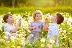 Dwa dzieciak ch?opiec i ma?ego dziewczynki dmuchanie na dandelion kwitn? na naturze w lecie Szcz??liwy zdrowy berbe? i obrazy stock