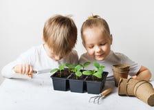 Dwa dzieciaka z, ekologia, ?rodowisko temat na bia?ym tle, i fotografia royalty free