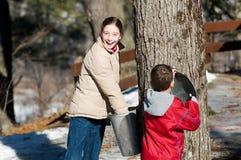 Dwa dziecka patrzeje w klonowym aproszy wiadrze obrazy royalty free