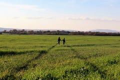 Dwa dziecka stoją w zielonej ścieżce w polu obraz royalty free