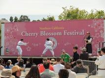 Dwa dziecka zacierają się aikido przy San Fransisco Czereśniowym okwitnięciem Fes zdjęcie stock