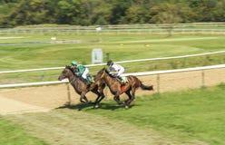 Dwa dziewczyn dżokej jedzie biegowego konia Obraz Royalty Free