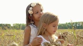 Dwa dziewczyn uścisk w polu banatka natura Russia Urocze dziewczyny dbają przyjaciela o przyjacielu Jasnogłowy zbiory wideo