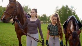 Dwa dziewczyny iść blisko koni zbiory wideo