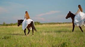 Dwa dziewczyny w białych sukniach na horseback Dziewczyny w polu na horseback swobodny ruch zbiory