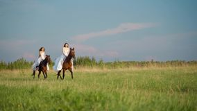 Dwa dziewczyny w bia?ych sukniach na horseback Dziewczyny skacze na polu na horseback swobodny ruch zdjęcie wideo