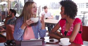 Dwa Żeńskiego przyjaciela Siedzi W sklep z kawą gawędzeniu zbiory