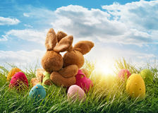 Dwa Easter królika Obraz Stock