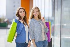 Dwa eleganckiej dziewczyny z torba na zakupy zdjęcie stock