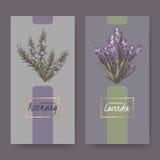 Dwa eleganckiej etykietki z lawendą i rozmarynami barwią bukiety ilustracja wektor