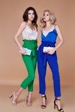 Dwa eleganckiej kobiety seksownej pięknej damy mody stylu naturalny zakrzep obraz royalty free