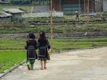 Dwa etnicznego chidrens chodzi na wiejskiej drodze w Sapa zdjęcie stock