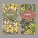Dwa etykietki z ylang-ylang i bergamotowej pomarańcze kolorem kreślą royalty ilustracja