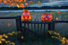 Dwa evilly śmiają się pomarańczowej bani z jarzyć się one przyglądają się na drewnianym ogrodzeniu przy nocą fotografia stock